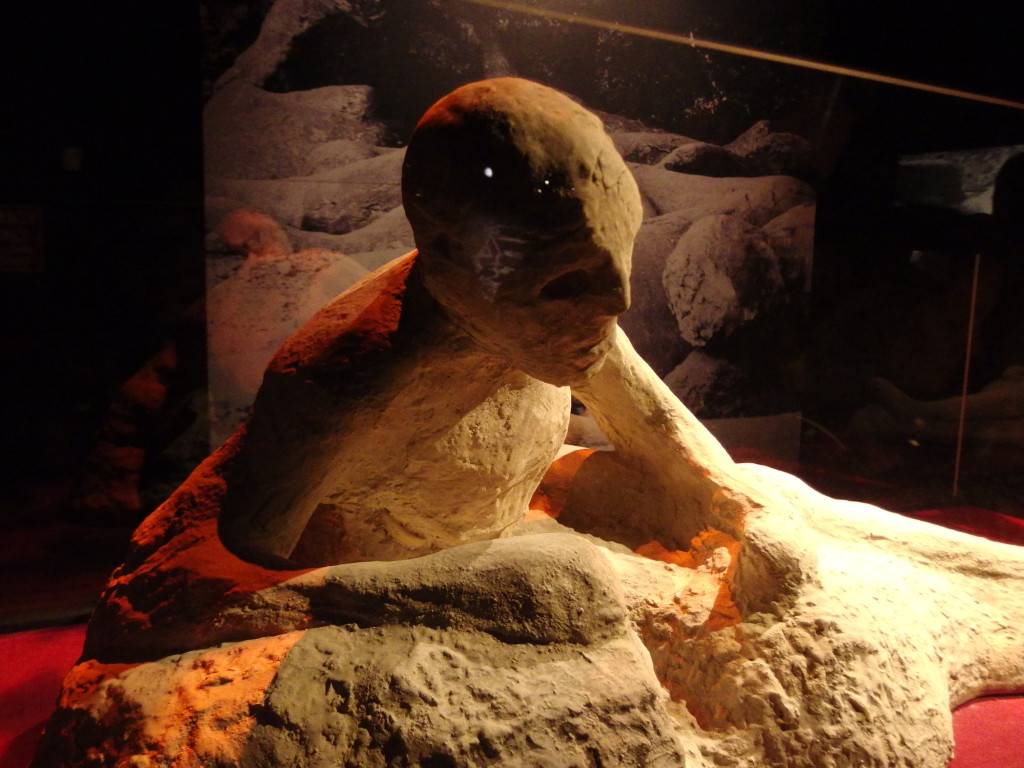 Pompeii Victim, Seattle, WA. Photo by Scarlett Messenger