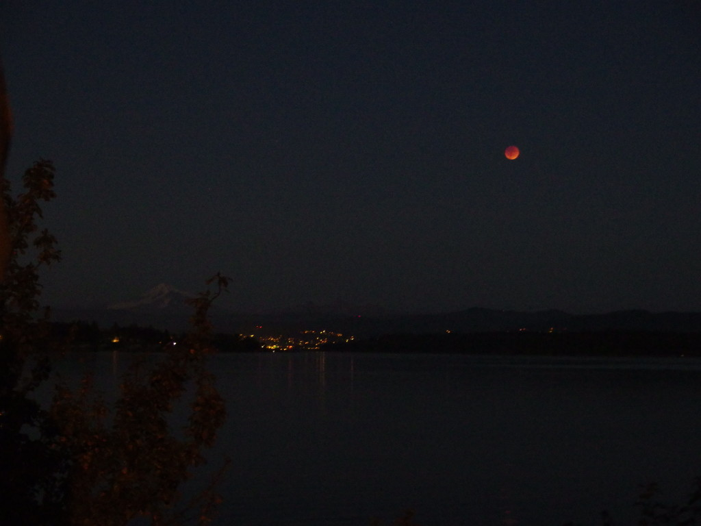 Blood Moon Over Bellingham, Lummi Island WA. Photo by Scarlett Messenger