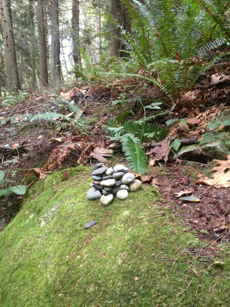 Stone Pile, Lummi Island, WA. Photo by Scarlett Messenger